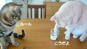 お手本M.jpg