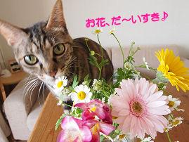 お花だいすき.jpg