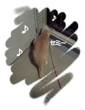 さんぽ5.jpg