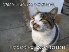 ガンバ君.jpg