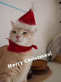 クリスマスM.jpg