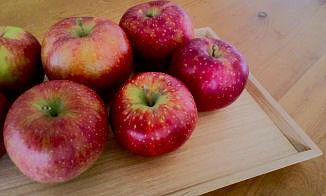 ・りんご.jpg