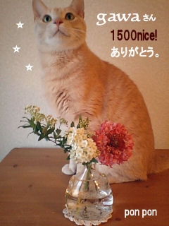 PAP_0128 gawaさん 1500ナイス 確定.jpg