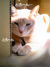 PAP_5188-1.jpg
