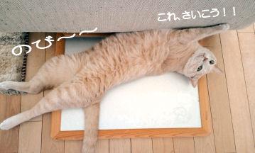 アルミひんやりボード.jpg