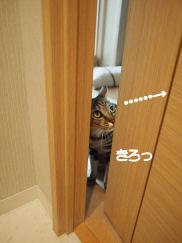 ドア確認.jpg
